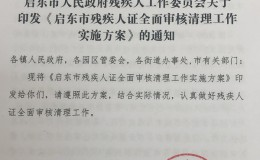 启东市人民政府残疾人工作委员会关于印发《启东市残疾人证全面审核清理工作实施方案》的通知