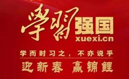 """启东肢协""""迎新春 赢锦鲤""""-学习强国知识竞赛圆满结束"""