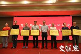 1102名运动员决出430枚金牌!江苏省第十届残疾人运动会闭幕