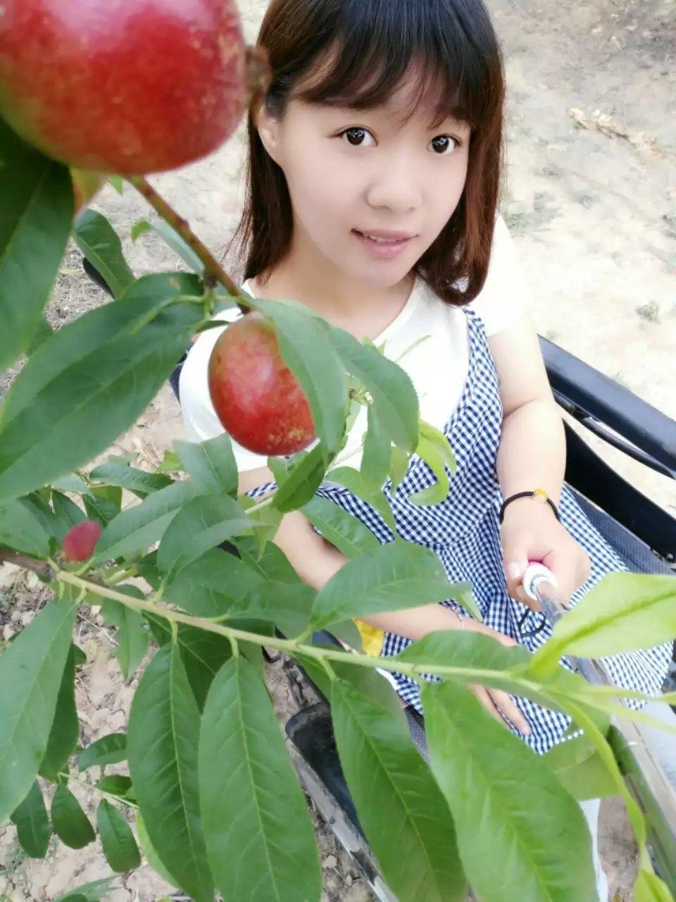 """""""油桃妹""""——善良美丽的残疾姑娘韩文静-19岁地震孤儿独立导演的纪录片《轮椅上的女孩》 人物故事 第8张"""