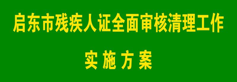 启东市残疾人证全面审核清理工作实施方案