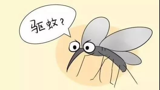 为什么一群人就只有我被蚊子咬???